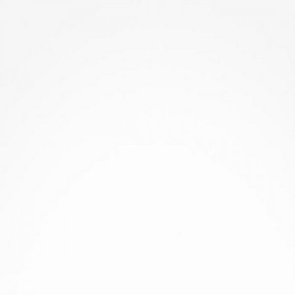 16мм ЛДСП  Белый 101 РЕ (2750*1830) Свисс Кроно